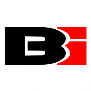Bass Inferno - BI3300 PRO